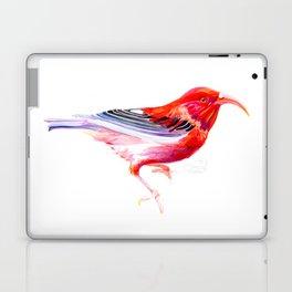 Iwi Bird Laptop & iPad Skin