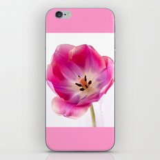 Pink Tulip iPhone & iPod Skin