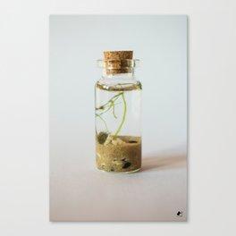 Micro Aqua Terrarium Canvas Print