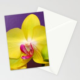 Vivid Yellow, Pink Orchid Stationery Cards