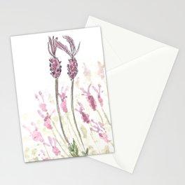 Lavandula stoechas Stationery Cards