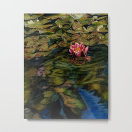 Water Lily Nestled in Magical Reflections Metal Print