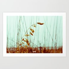 Sea Oats. Art Print