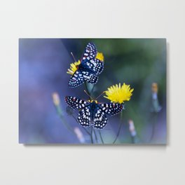 The Checkerspot Couple Metal Print