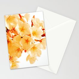 WARM BLOSSOMS Stationery Cards