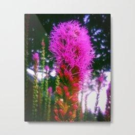 Perennial Bloom Metal Print