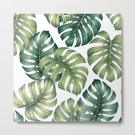 Monstera botanical leaves illustration pattern on white Metal Print