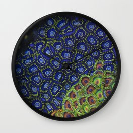 "Macro of Coral Zoanthus ""Blue Hornet"" Wall Clock"