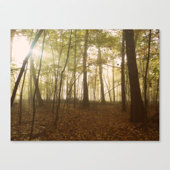 A Secret World Canvas Print