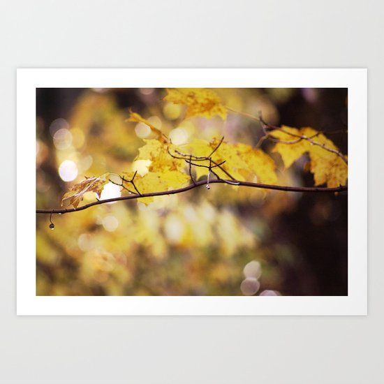 Amber Droplets Art Print