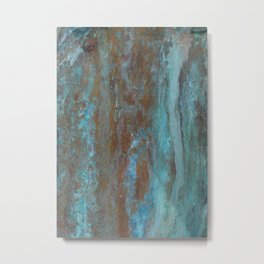Patina Bronze rustic decor Metal Print