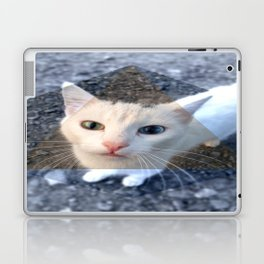 METRIC CAT Laptop & iPad Skin