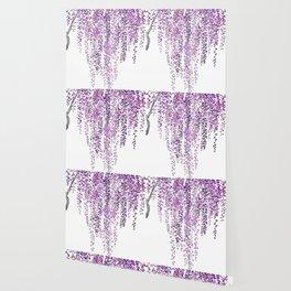 purple wisteria in bloom Wallpaper