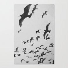 Flock 2 Canvas Print