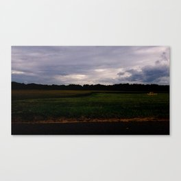 South Maple Cornfield Canvas Print