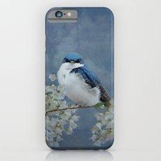 Tree Swallow iPhone 6s Slim Case
