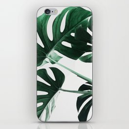 Monstera, Leaves, Plant, Green, Scandinavian, Minimal, Modern, Wall art iPhone Skin