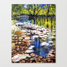 Reflections in the shallow River Canvas Print