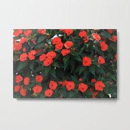A Ton Of Orange Flowers Metal Print