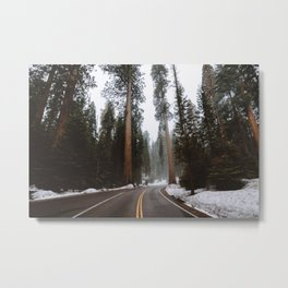 Giant Forest Adventure Metal Print
