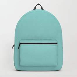 Aqua Blue Solid Backpack
