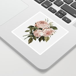 Three English Roses Sticker