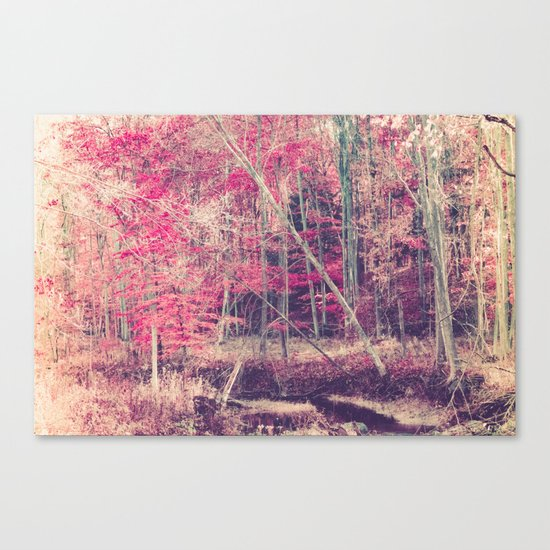 Rasberry Canvas Print