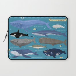 Whale Species Laptop Sleeve