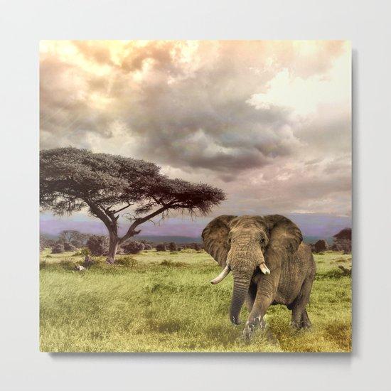 Elephant Landscape Collage Metal Print