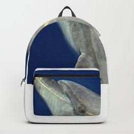 Making friends with a bottlenose dolphin Backpack