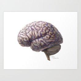 Brain and Vein Art Print