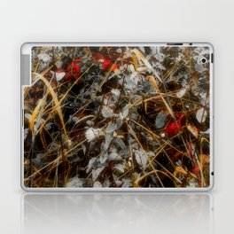 The Cold Heart of February Laptop & iPad Skin