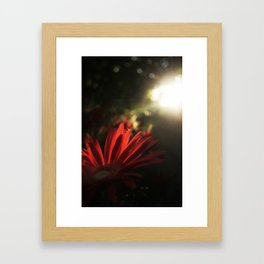 Color Beams Framed Art Print