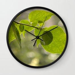 Βougainvillea II Wall Clock
