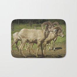 Bighorn Sheep along a Roadside in the Black Hills Bath Mat