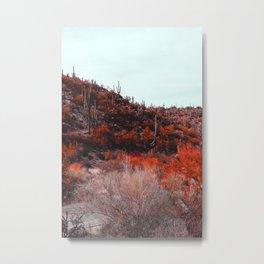 Tuscon, AZ. Metal Print