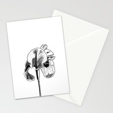 Desert Iris Stationery Cards