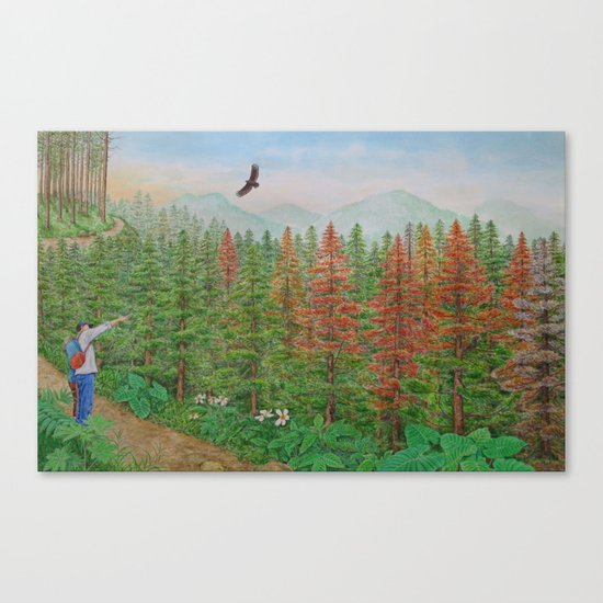 A Day of Forest(8). (coniferous forest) Canvas Print