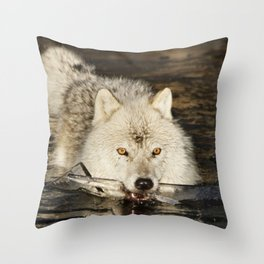 Weapon for a cold war Throw Pillow