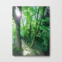 Forest Path #photography #lightroom #nature #buyart Metal Print