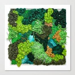 Moss Patch Canvas Print