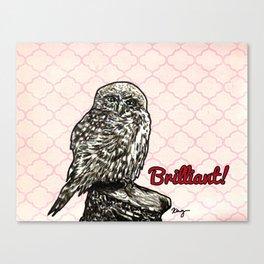Brilliant Owl- Sassy Bird Canvas Print