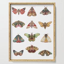 Collector: Moths // Jess Polanshek Serving Tray