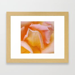 Soft Pink Folds Framed Art Print