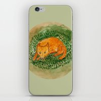 death cab for cutie iPhone & iPod Skins featuring cutie by 1ena