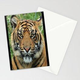 Graceful Gaze 🐾 Bengal Tiger Stationery Cards