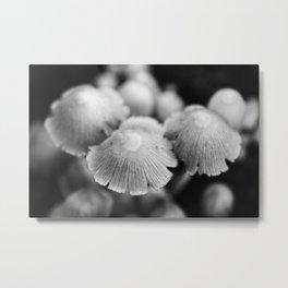 Shaggy Ink Cap Mushrooms 3 Metal Print