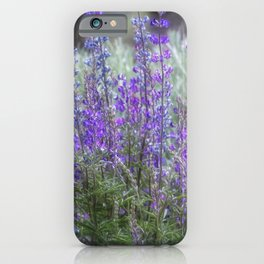 Color in the High Desert iPhone Case