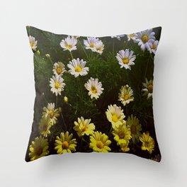 Field of Daisies by Aloha Kea Photography Throw Pillow