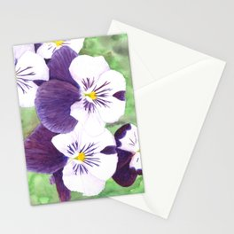 Purple and white pansies flowers Stationery Cards
